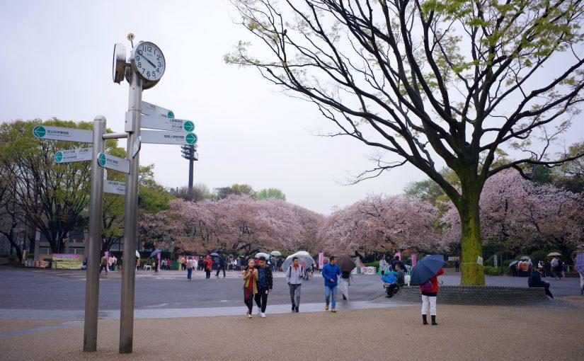 東京親子遊 Day6 – 錦系町 上野 秘苑