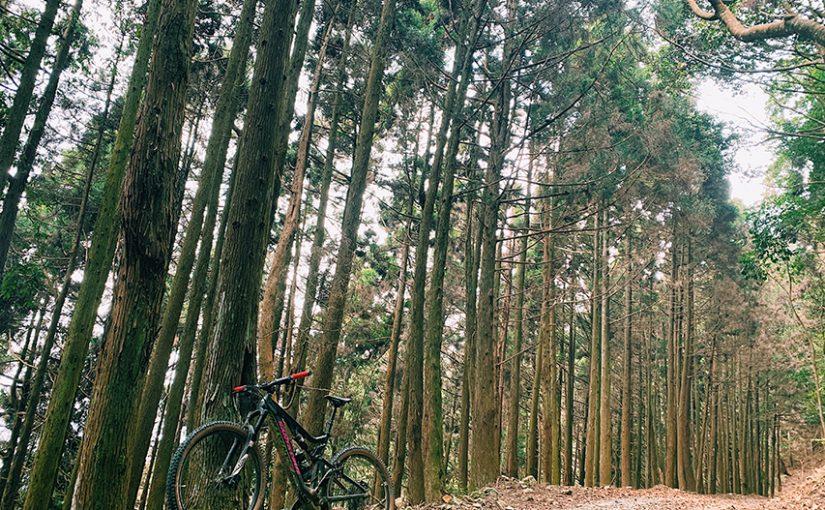 裡冷林道單車越野探騎